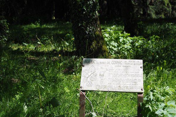 Arboretum Sarrebourg - panneau