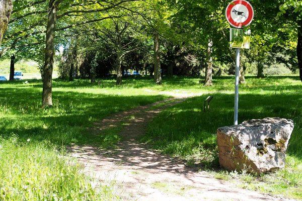 Arboretum Sarrebourg